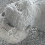 Pompeia 02
